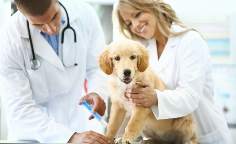 Laser Therapy: Safe, Painless, Efficient