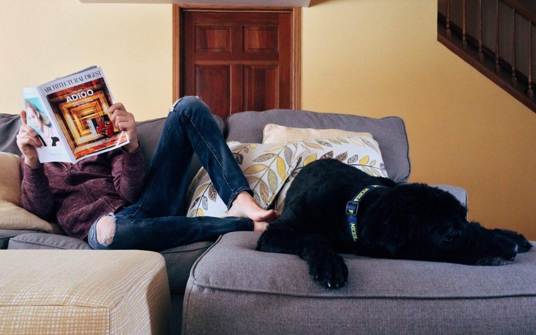 Help Your Dog Adjust to Quarantine During Coronavirus