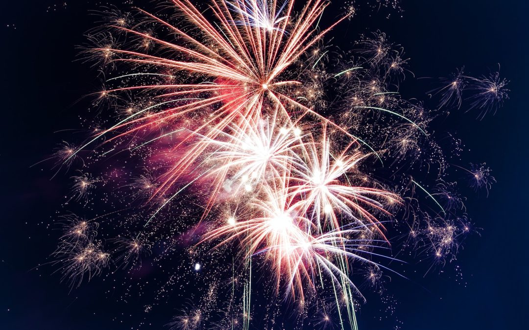 Fireworks and Pets: 4th of July Safety Tips